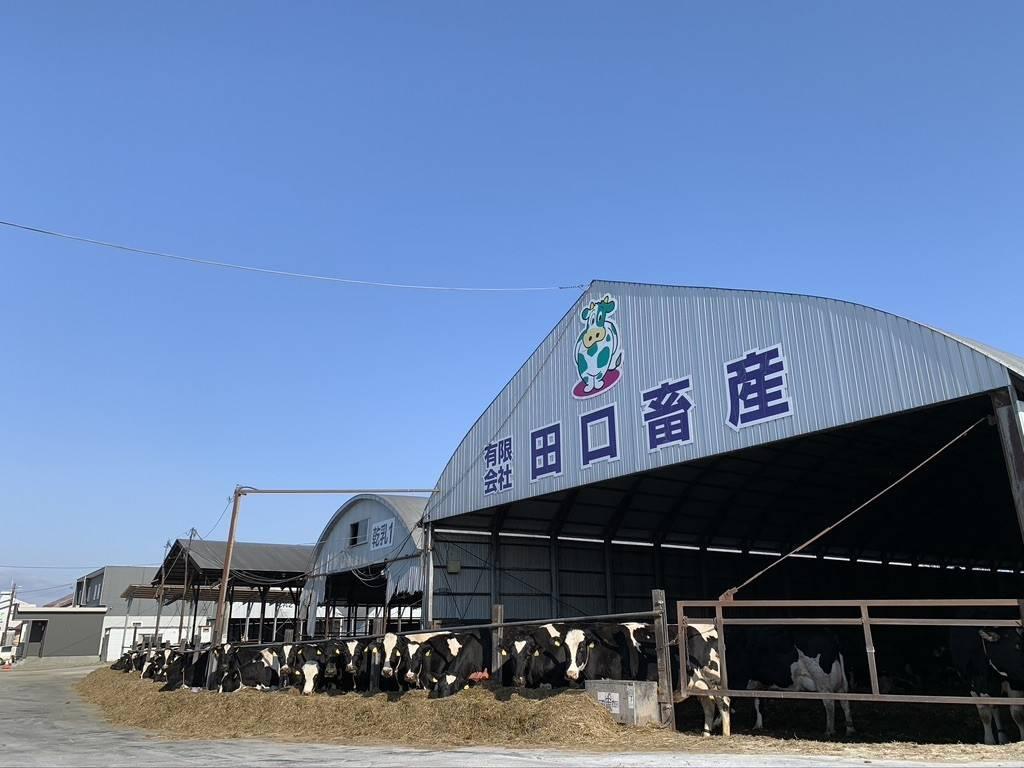 田口畜産_牛舎